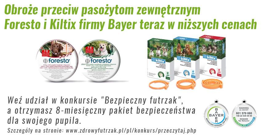 zawieszki-konkurs-bayer