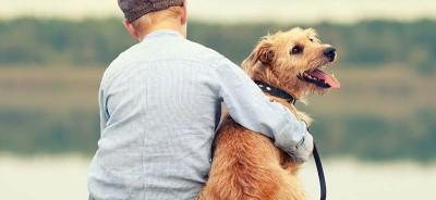 Terapeutyczny wplyw zwierzat na czlowieka